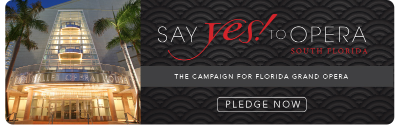 Say Yes Campaign banner